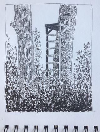 TreeStand2