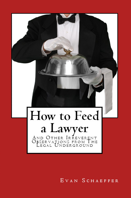 A Shockingly Great Christmas Gift for Lawyers - Evan