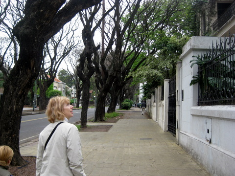 Buenos_aires_october_2008_070